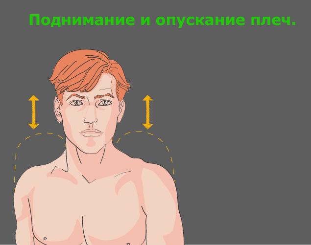 Профилактика шейного остеохондроза: поднимание и опускание плеч